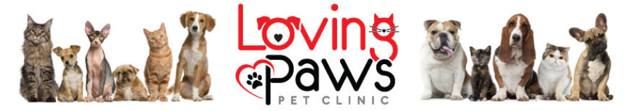 Loving Paws Pet Clinic